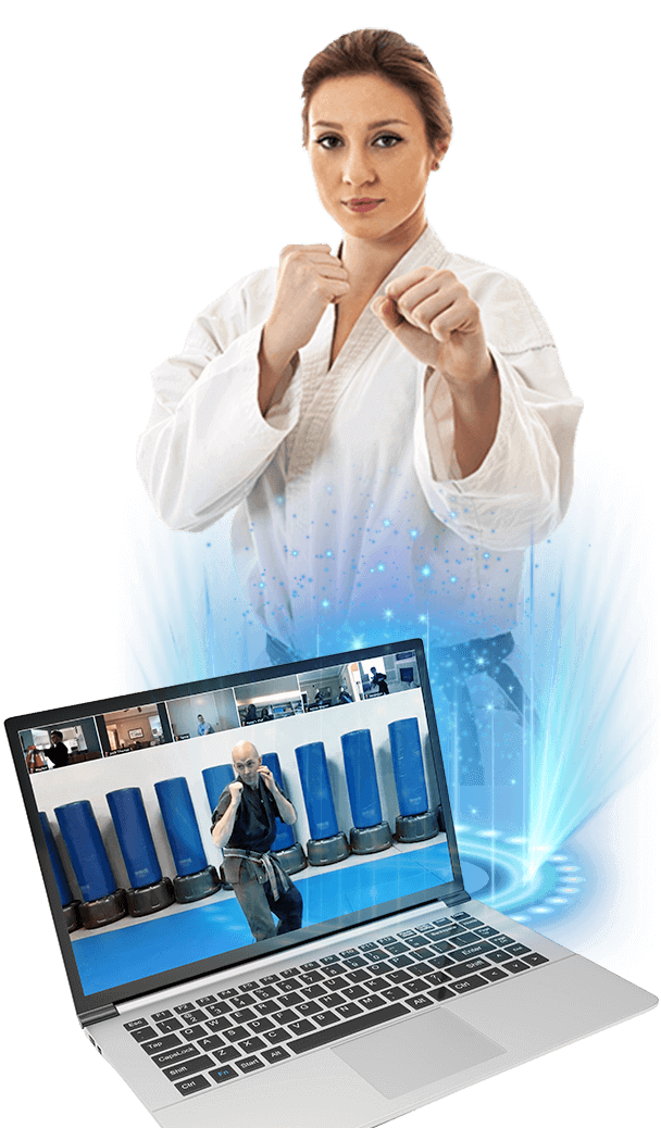 adult online martial arts classes